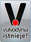 vulvodynia-istnieje